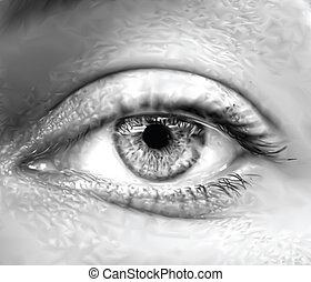 Grey female eye macro. Vector illustration