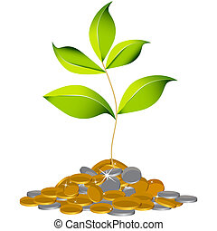 Growing Wealth Plant