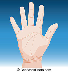 An image of a realistic hand.