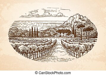 Hand drawn rural landscape on old paper background. Countryside scenery. Vineyard by the sea. Vintage style vector illustration.