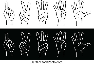 Counting Hands from one to five. Vector