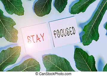 Handwriting text writing Stay Focused. Concept meaning Be attentive Concentrate Prioritize the task Avoid distractions.