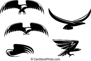 Heraldry eagle symbols and tattoo isolated on white
