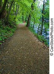 Hiking Trail by the River