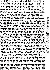 Hundreds of high quality animals silhouettes - vector