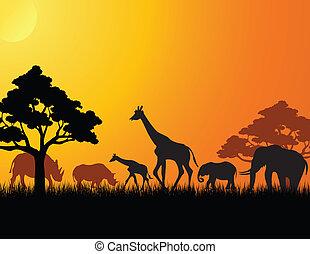 illustration of africa animal silhouette