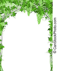 Illustration of green grape vine frame with copyspace for your text