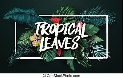 Tropical leaves with frame rectangle background