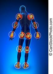 Joints pain - trauma
