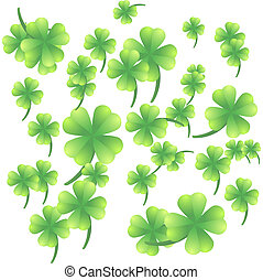 Leaves of clover on a white background