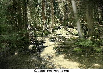 Magical Mountain Stream