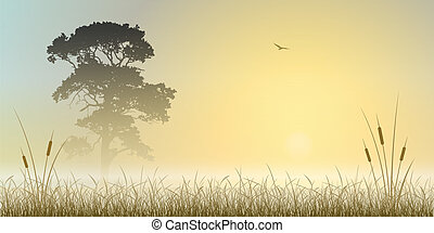 A Misty Sunrise, Sunset Landscape with Tree and Reeds