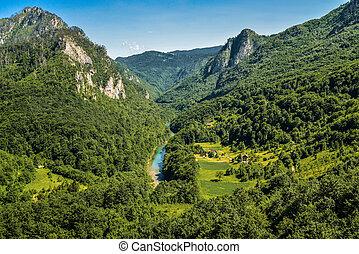 Mountain river Tara