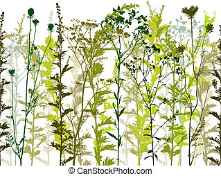 Natural wild plants and weeds silhouettes set %u2013 seamless horizontal vector background.