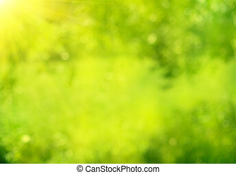 nature abstract green summer bokeh background