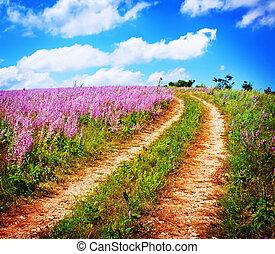 nature in Crimea