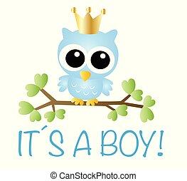 newborn baby boy announcement