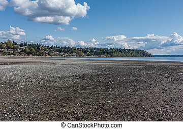An extreme low tide reveals the seabed in Normandy Park, Washington.