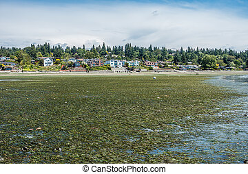 A view of waterfront homes in Normandy Park, Washington. The tide is extremely low.