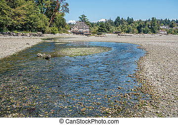 A strem crosses the shore at Normandy Park, Washington on its way to the Puget Sound.