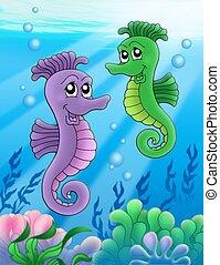 Pair of sea horses