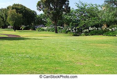 Grassy park