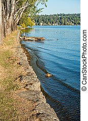 Park Shoreline Landscape 2