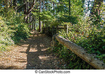 Path At Park 2