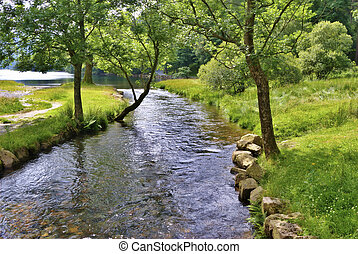 Summer view of a stream flowing into Buttermere in the English Lake District