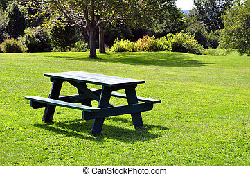 Picnic table at park on a sunny day