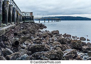 Pier At Low Tide 2