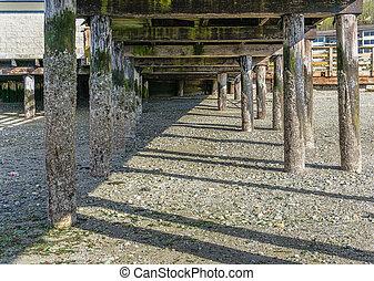 Pier Pilings At Low Tide 2
