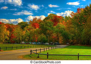 Pinnacle Mountain Park - Fall