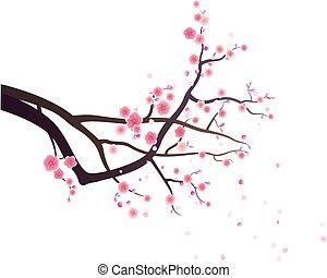 plum blossom pattern design