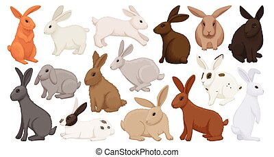 Rabbit vector cartoon icon set . Collection vector illustration bunny on white background. Isolated cartoon icon set fluffy rabbit for web design.
