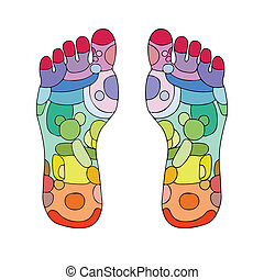 reflexology zones, massage signs and colored points