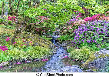 Rocky Garden Stream 6