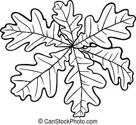 Rosette oak leaves