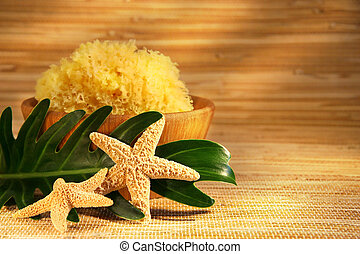 Sea sponge and wooden bowl