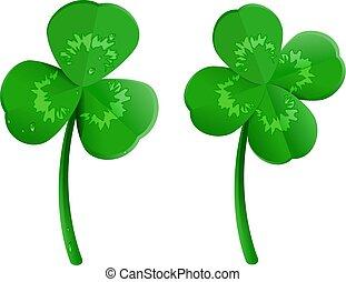 Set green shamrock clover leaf with dew drops