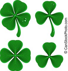Set of green leaves of clover