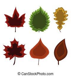 Set of leaf icon. Cartoon style. Vector Illustration.