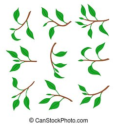 Set of spring branches with leaves