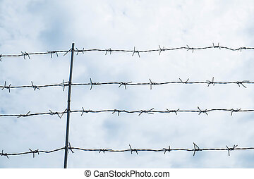 old barbed steel wire