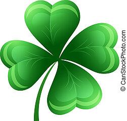 Shamrock or clover leaf. Vector illustration