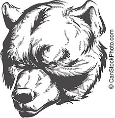 Silhouette bear head engraving etching front view isolated sketch on black-and-white vector illustration