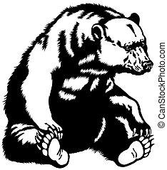 sitting bear black white