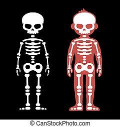 Skeletons Human Bones Set. Cartoon Style. Vector