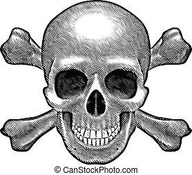 Skull and crossbones figure. Illustration on white background.