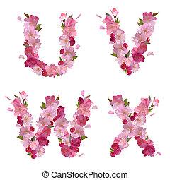 Spring alphabet with cherry flowers UVWX